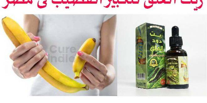 زيت العلقه لتكبير القضيب فى مصر _ Leech oil for penis enlargement in Egypt
